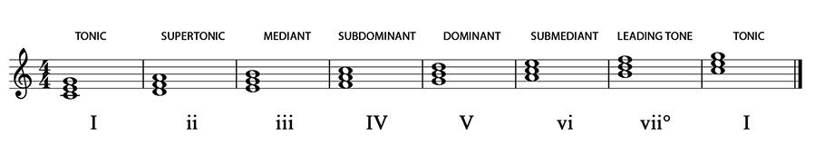 16 Diatonic Chords Music Student 101